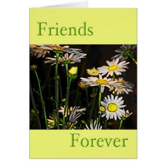 Cartes Amis pour toujours