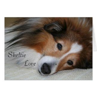 Cartes Amour de Sheltie