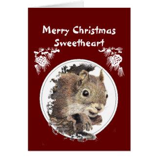 Cartes Amoureux de Noël de groupe d'écureuil Nuts