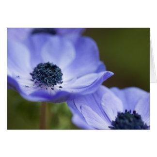 Cartes Anémone bleue
