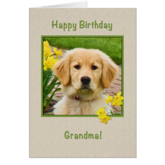 Cartes Anniversaire, grand-maman, chien de golden