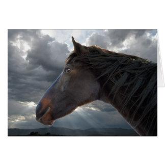 Cartes Appui de sympathie et confort - amant de cheval