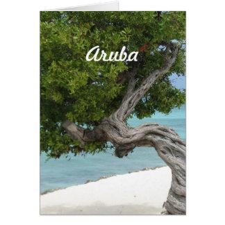 Cartes Arbre de Divi Divi dans Aruba