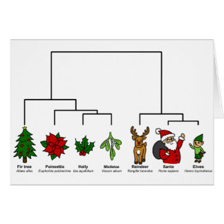Cartes Arbre de Noël de la vie
