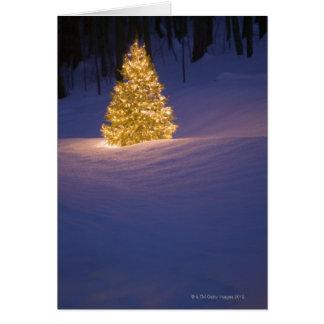 Cartes Arbre de Noël de Lit dehors