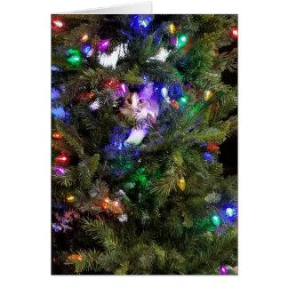 Cartes Arbre de Noël Kitty
