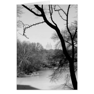 Cartes Arbre d'hiver - Central Park NYC