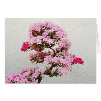 Cartes Arbre rose de bonsaïs