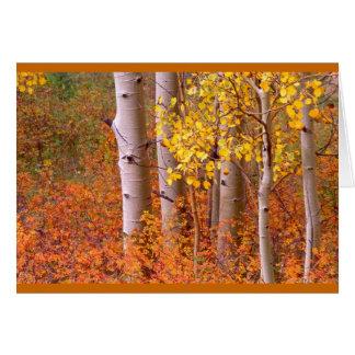 Cartes Arbres d'Aspen en automne