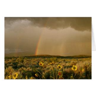 Cartes Arc-en-ciel de vallée de San Luis