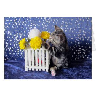 Cartes Arrêtez et jouez avec les fleurs (Lilo)