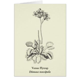 Cartes Art botanique de plante carnivore