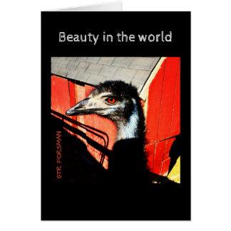 Cartes Art de photographie d'émeu par TRForsmam