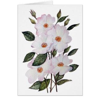 """Cartes Art floral de la ballerine des roses"""""""