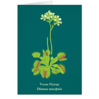Cartes Art floral de plante carnivore