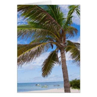 Cartes Aruba, palmier sur la plage
