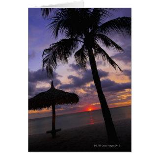 Cartes Aruba, silhouette de palmier et de palapa