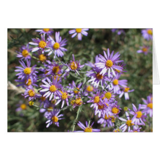 Cartes Aster inconnu, parc national de séquoia