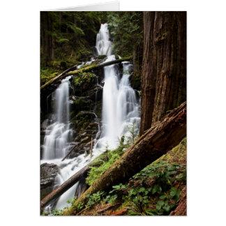 Cartes Automnes de garde forestière