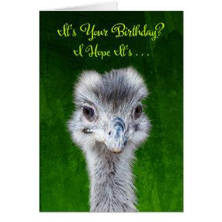 Cartes Ayez un anniversaire d'Emusing - émeu
