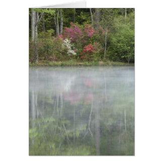 Cartes Azalées relfecting dans un étang pendant tôt