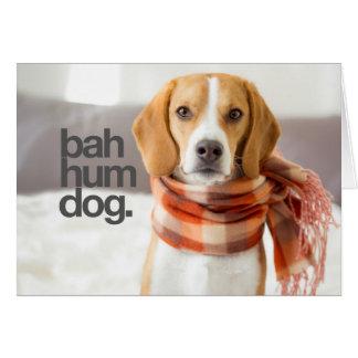 """Cartes Beagle """"de chien de bourdonnement de Bah"""""""