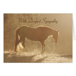 Cartes Beau cheval dans la perte légère de sympathie de