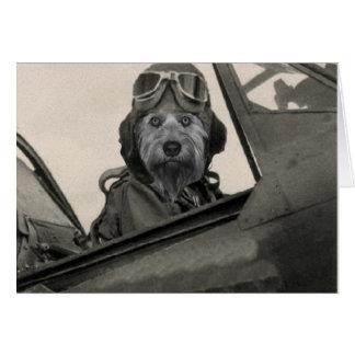 Cartes Bella en tant que pilote des années 1940 d'A