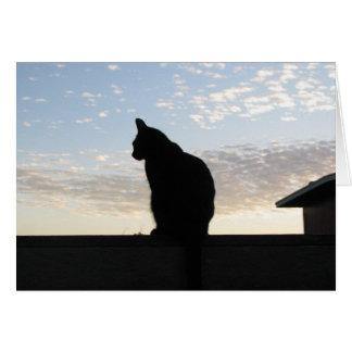 Cartes Belle silhouette de chat au coucher du soleil
