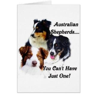 Cartes Bergers australiens