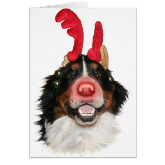 Cartes Bernese Roodolph (Rudolph)