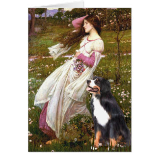 Cartes Bernese - WIndflowers