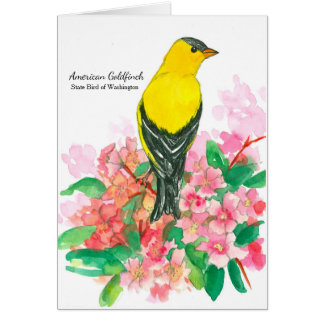 Cartes Blanc américain d'oiseau de l'état de Washington