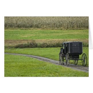 Cartes Boguet amish sur la ruelle de ferme, Ohio du