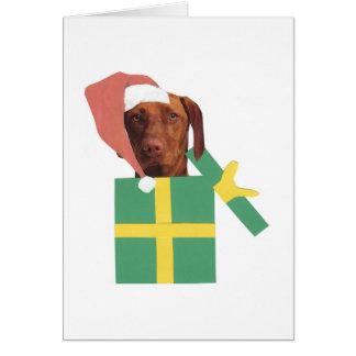 Cartes Boîte-cadeau verte de Vizsla