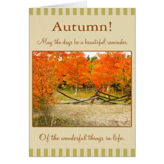 Cartes Bon thanksgiving ! Trembles colorés d'automne
