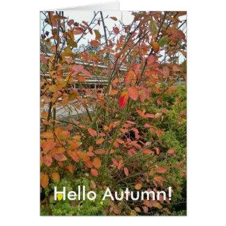 Cartes Bonjour automne