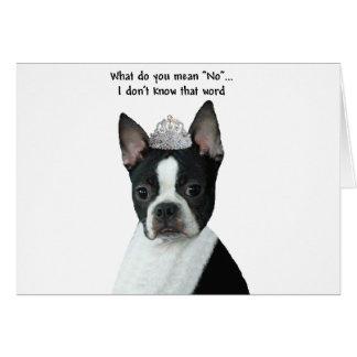 """Cartes Boston Terrier :  Que voulez-vous dire """"non"""" ?"""