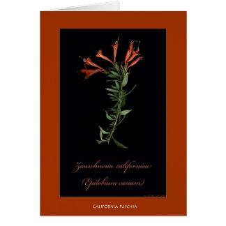 Cartes botaniques d'impression de la Californie