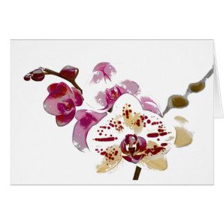 Cartes Bouquet de fleur d'orchidée de Phalaenopsis