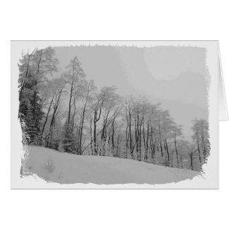 Cartes Bouts de Snowy White
