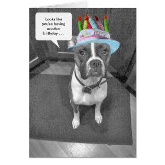 Cartes Boxeur Brindle de casquette d'anniversaire