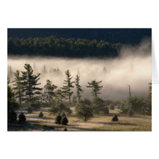 Cartes Brouillard de matin dans l'Adirondacks 4