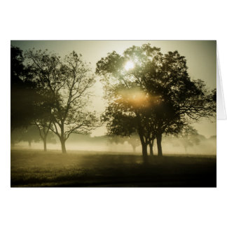 Cartes Brume de matin