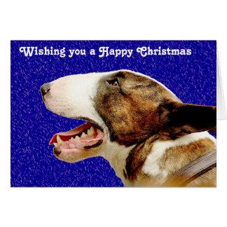 Cartes Bull-terrier de l'anglais de Noël