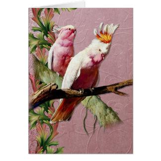 Cartes Cacatoès roses de repos - personnaliser