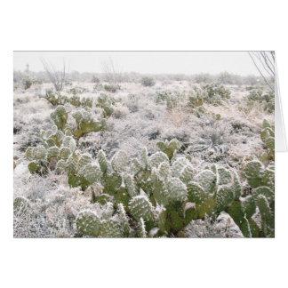 Cartes Cactus de neige