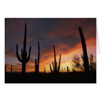 Cartes cactus de saguaro, gigantea de Carnegiea, ensuite
