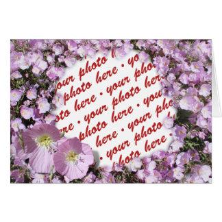 Cartes Cadre rose de photo de pavots