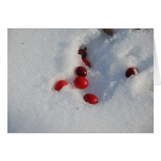 Cartes Canneberges dans la neige